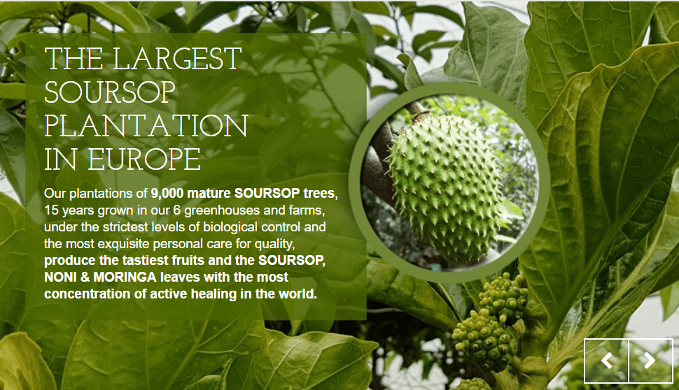 Soursop Largest farms in Europe