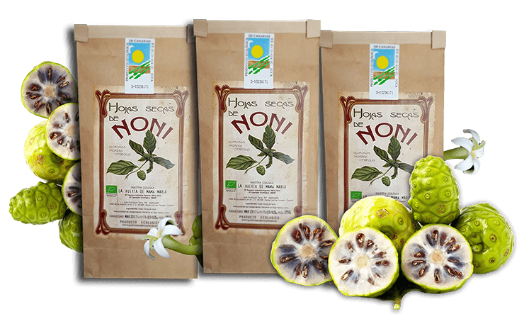 Noni Productos