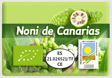 EUROPE NONI LEAVES & FRUIT · www.nonidecanarias.com