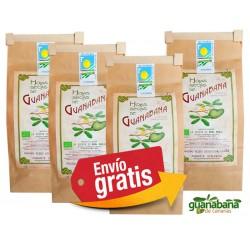 Hojas Guanabana Ecologicas Canarias