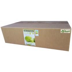 Organic Soursop Leaves Bulk 1 Kilo Natural Dried