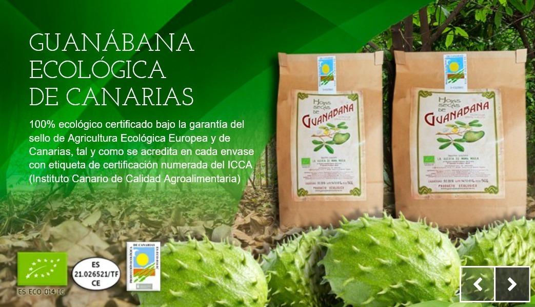 Hojas Guanabana Graviola Ecologica Canarias