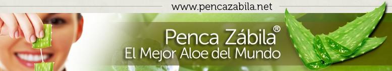 Aloe Vera PENCA ZABILA de Canarias · www.PencaZabila.net