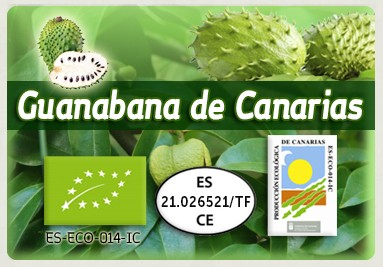 EUROPE SOURSOP LEAVES & FRUIT · www.guanabanadecanarias.com